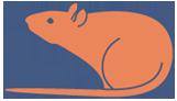 Украинский форум крыс - Украинский фонд помощи крысам